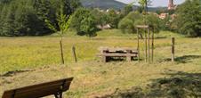 Circuit de randonnée: le petit patrimoine de Buhl