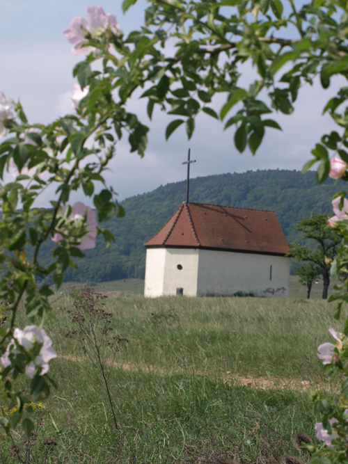 Bollenberg, Haut-Rhin, Alsace (Mairie d'Orschwihr)