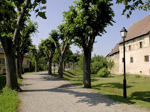 Rouffach, Pays de Rouffach, Vignobles et Châteaux, Haut-Rhin, Alsace