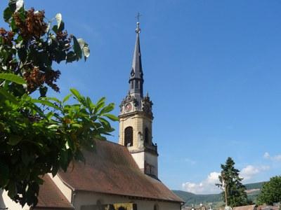 La roseraie et le Grand Cru Hatschbourg, Pays de Rouffach, Vignobles et Châteaux, Haut-Rhin, Alsace (Pragma-SCF)