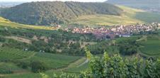 Wine path from Westhalten (Strangenberg)