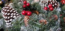 Vivez les traditions du Noël alsacien !