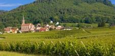 Das Elsass und seine Weinbaugebiete