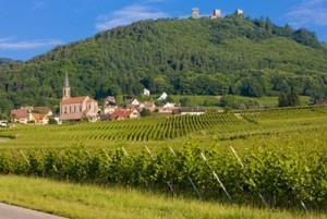 L'Alsace par le vignoble