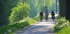 Vins et Route Romane à Vélo