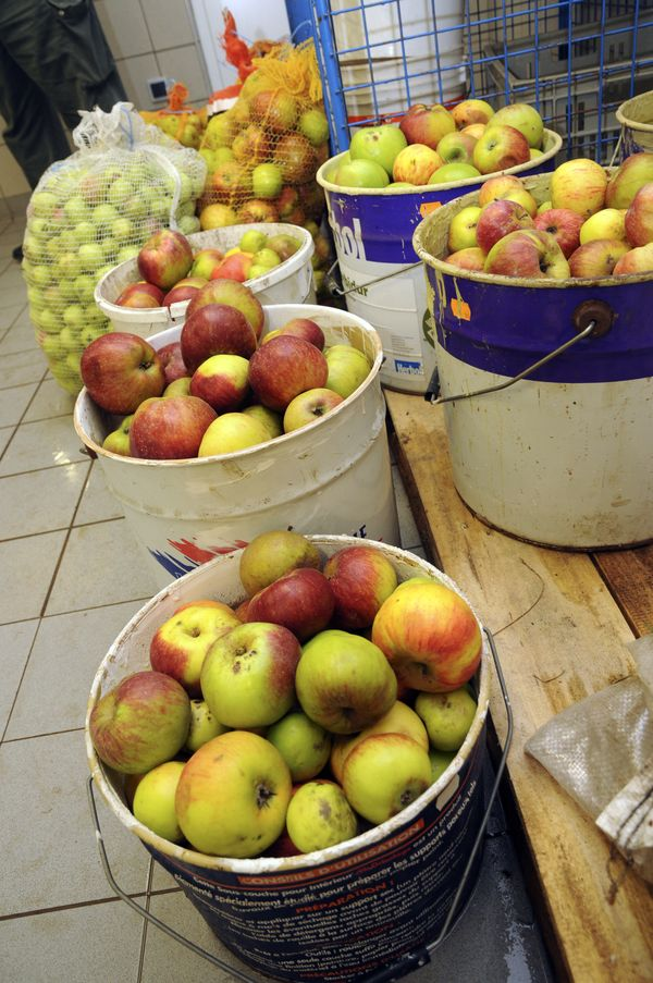 Atelier de jus de fruits intercommunal