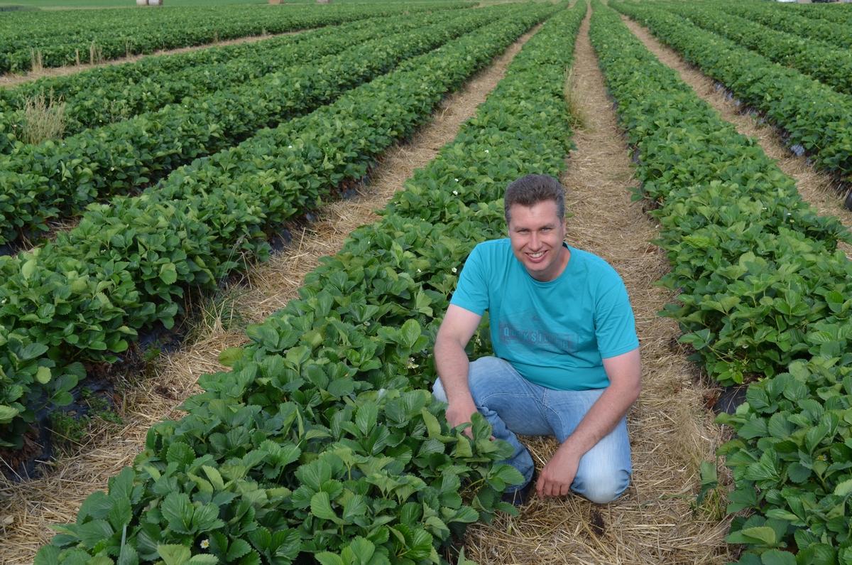 Gaec au jardin des fraises for Au jardin info