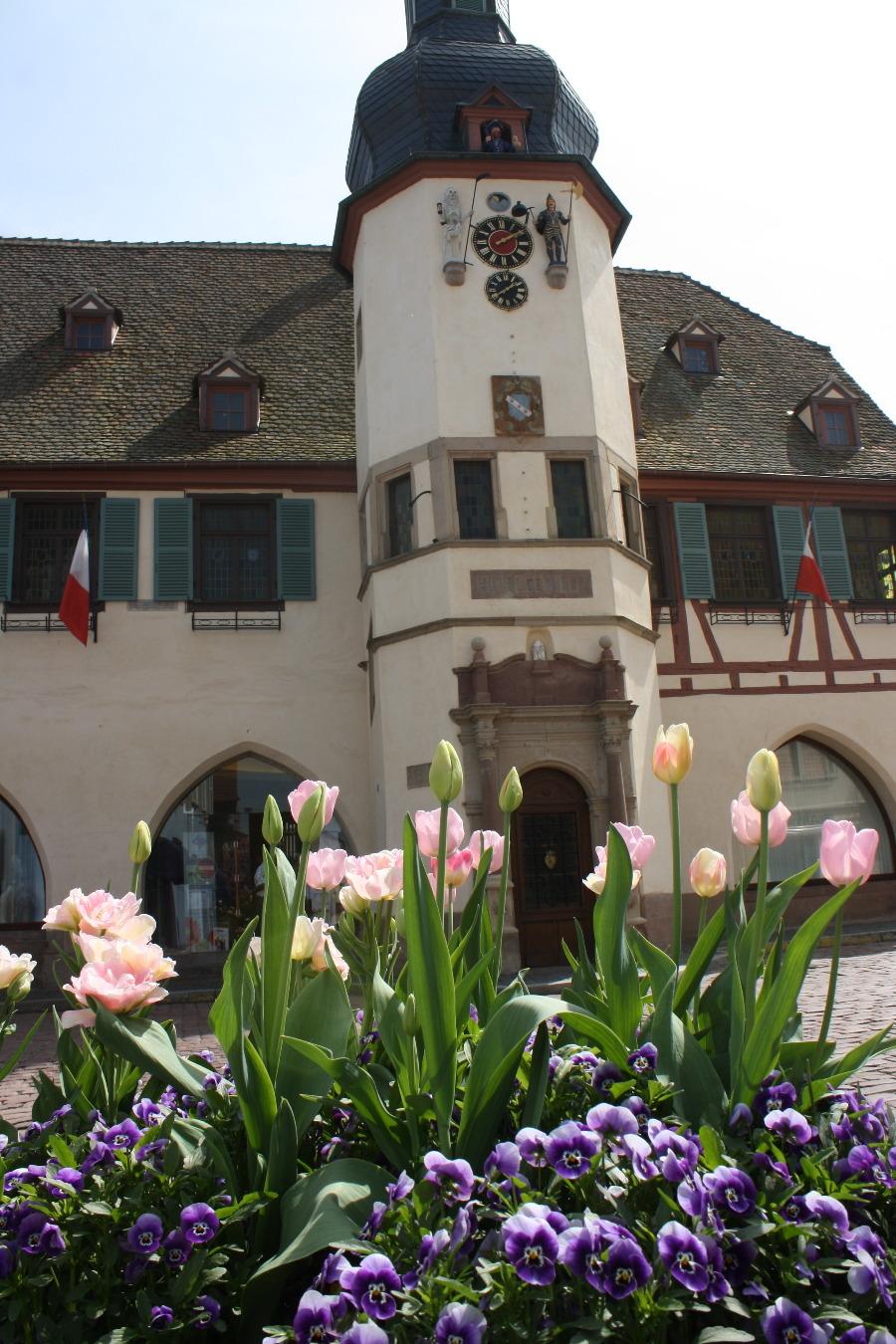 Visite guidée de l'Hôtel de Ville, Laube et Jacquemart - JEP
