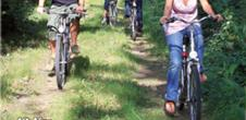 Circuit cyclable transfrontalier Rhinau - Kappel - Weisweil