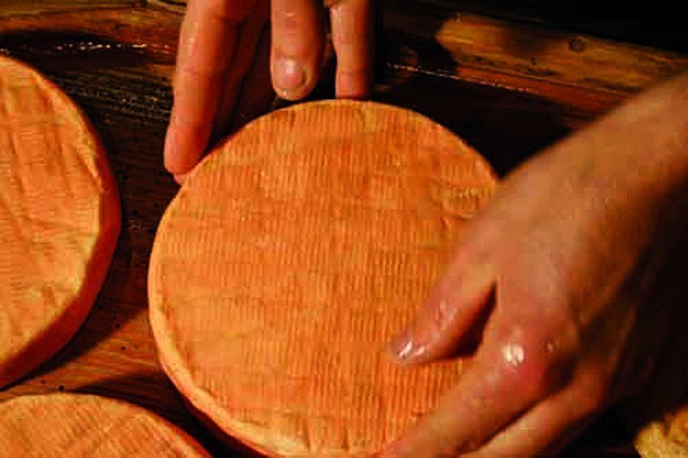 Visite de la fromagerie Haxaire