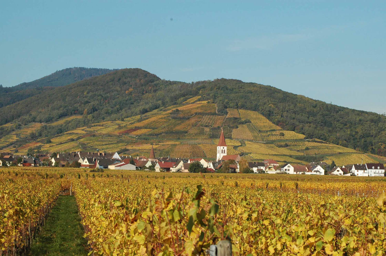 apps.tourisme-alsace.info/photos/kaysersberg/photos/gite-ammerschwihr-meyer-doris-village-d-ammerschwihe.JPG
