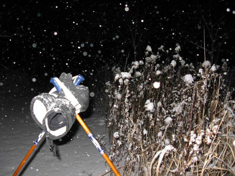 Sortie nocturne à ski de fond