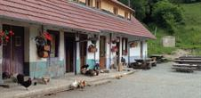Ferme-auberge du Baerenbach