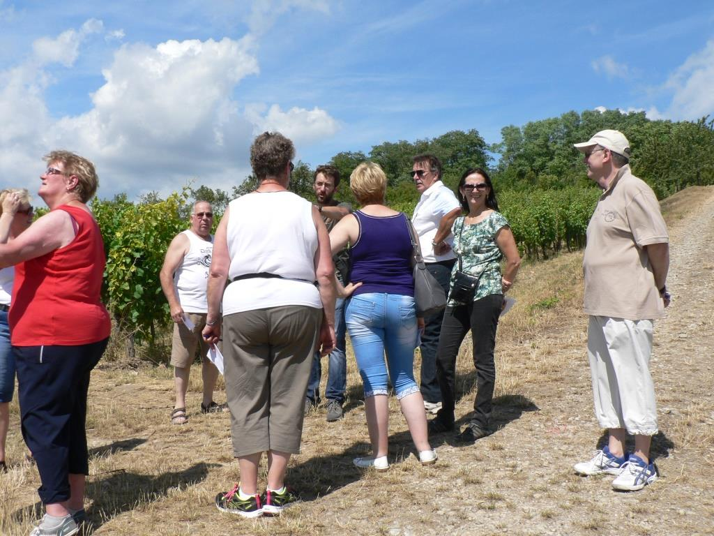 Sentier viticole du Bruderthal - balade gourmande 2014