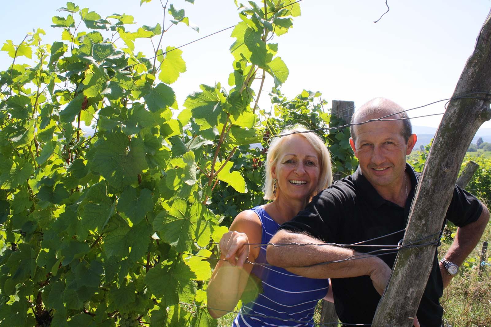 Wines Philippe Heitz