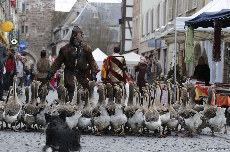 noel d antan Old time Christmas   Molsheim   en Alsace dans le Bas Rhin dpt 67 noel d antan
