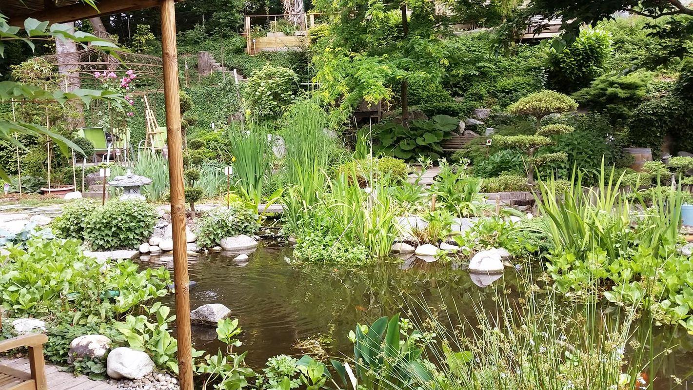le jardin de la tuilerie pfastatt