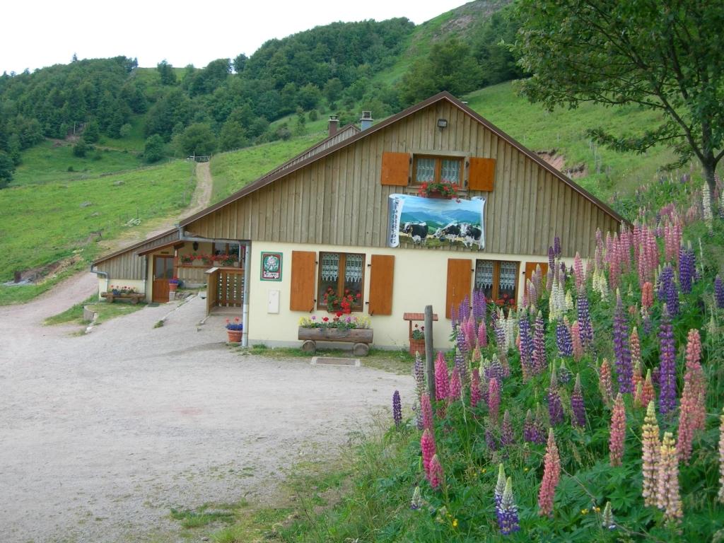 Ferme-Auberge Strohberg
