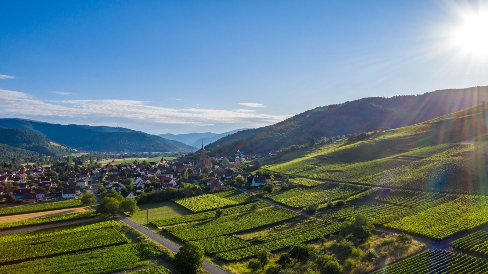 Camping la Route Verte à Wihr au Val - Vallée de Munster - Alsace