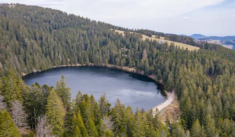 Le Lac Vert - Vallée de Munster - Alsace