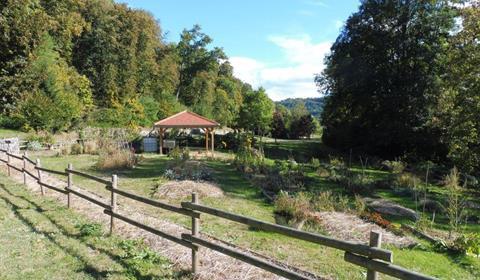 Troc de graines à Munster - Vallée de Munster - Alsace