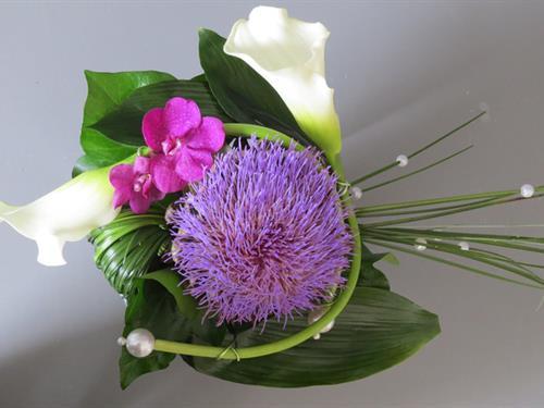 Fleurs Schira