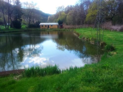 Etang de peche - Association des anciens papetiers de Turckheim - Vallée de Munster
