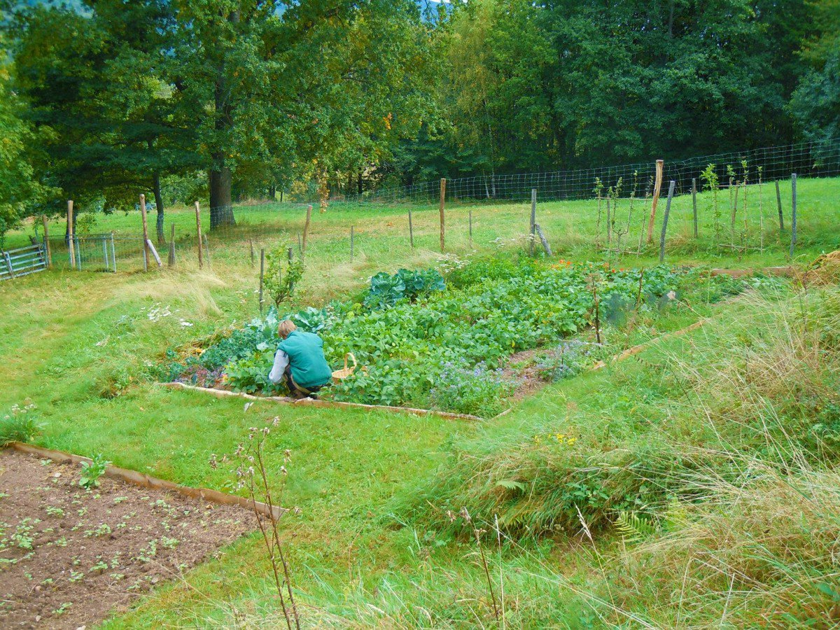 Les jardins de beltaine for Entretien jardin haut rhin