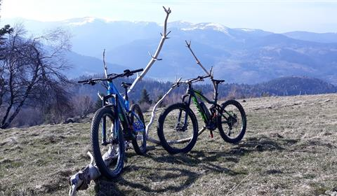 A'drenaline Bikes