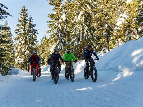 Moniteurs Cyclistes Français