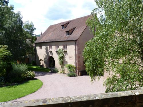 Musée du vignoble et des vins d'Alsace dans le parc du château de la confrérie St Étienne.