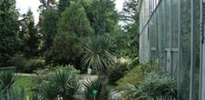 The Botanical Gardens, a poetic journey into the heart of science