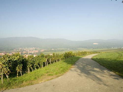 Oberhoffen lès Wissembourg