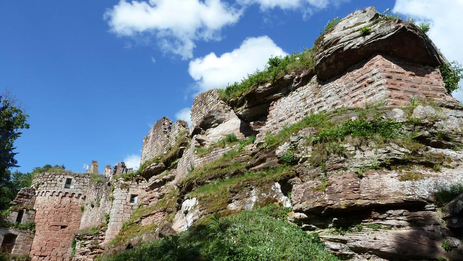 Histoires de nature au château
