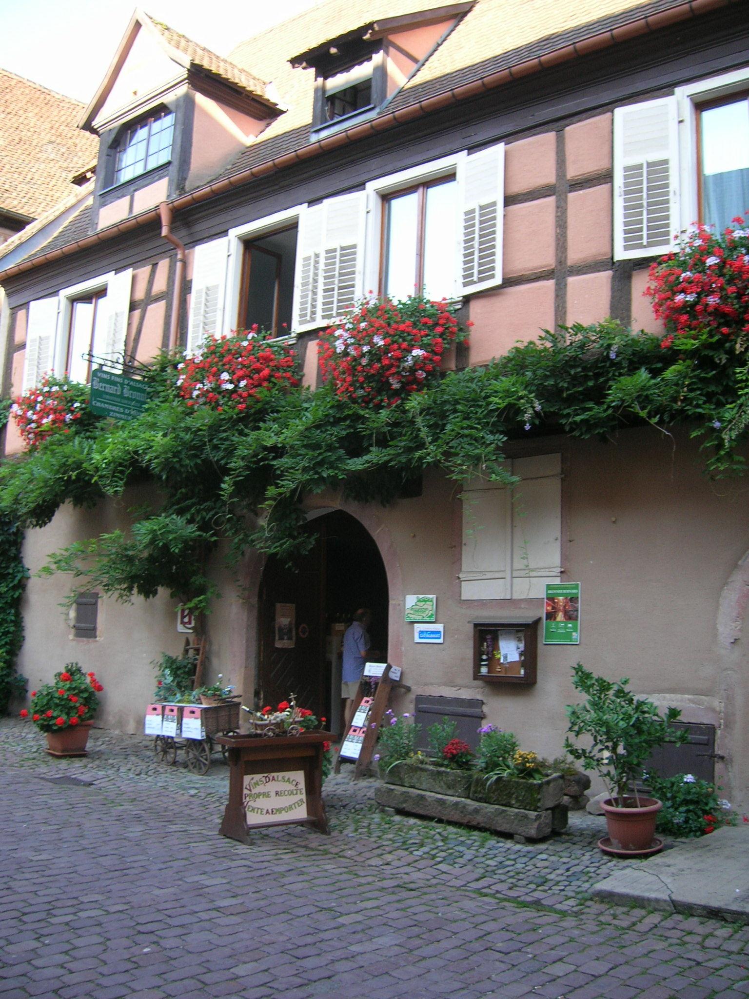 Vins d'Alsace BRONNER Bernard