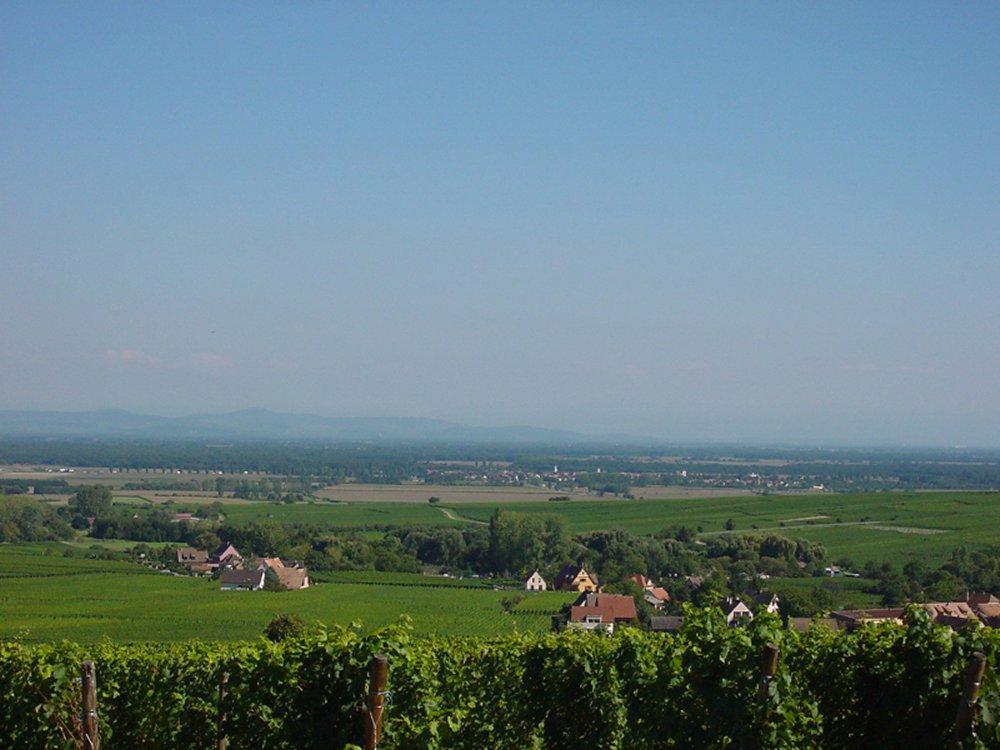 Cr�dit photo : Office de Tourisme du Pays de Ribeauvill� et Riquewihr