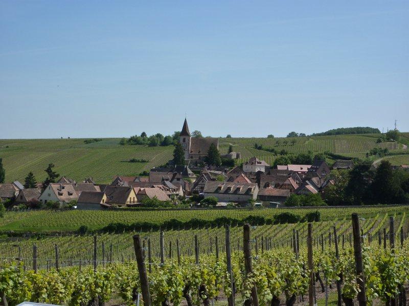 Hunawihr : découverte du sentier viticole et du village