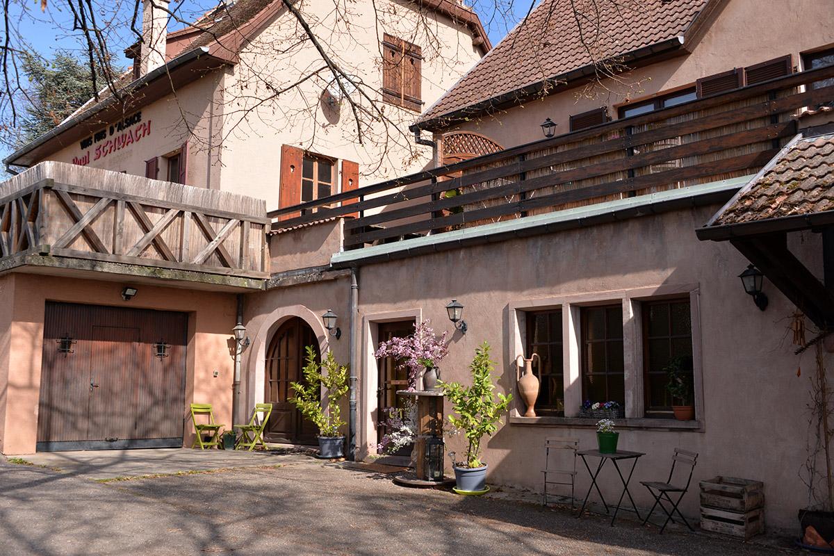 Location de vacances - Gîte le Liebau - Riesling
