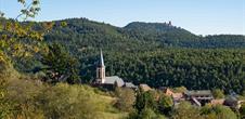 Marche gourmande de Thannenkirch