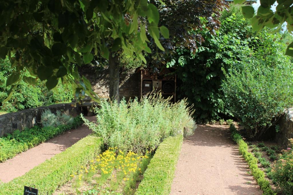 Jardin d'Anette (jardin médiéval)