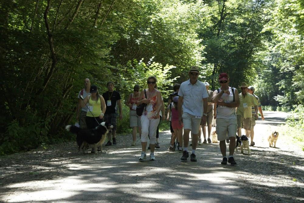 Marche gourmande d'Illhaeusern