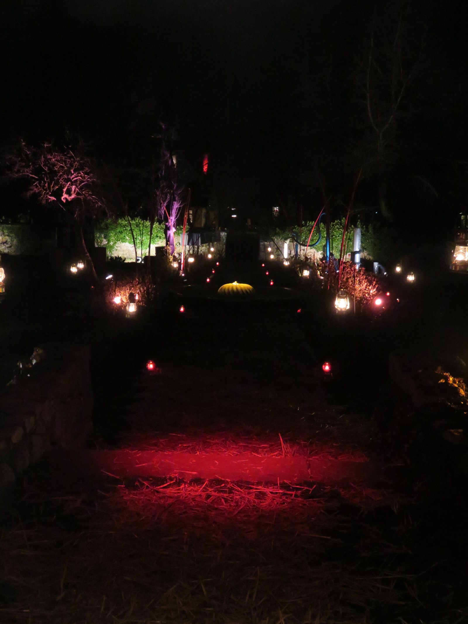Noël au jardin 2015 - © Parc de Wesserling