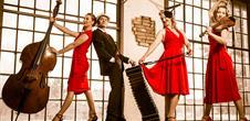 Le Printemps des Bretelles (festival des accordéons du monde)