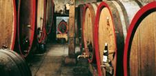 Caves viticoles