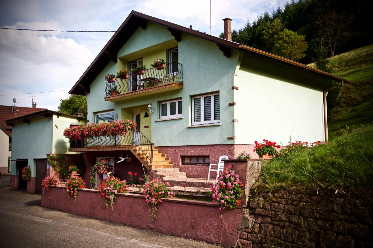 G te ami des biches wangenbourg engenthal - Wangenbourg engenthal office tourisme ...