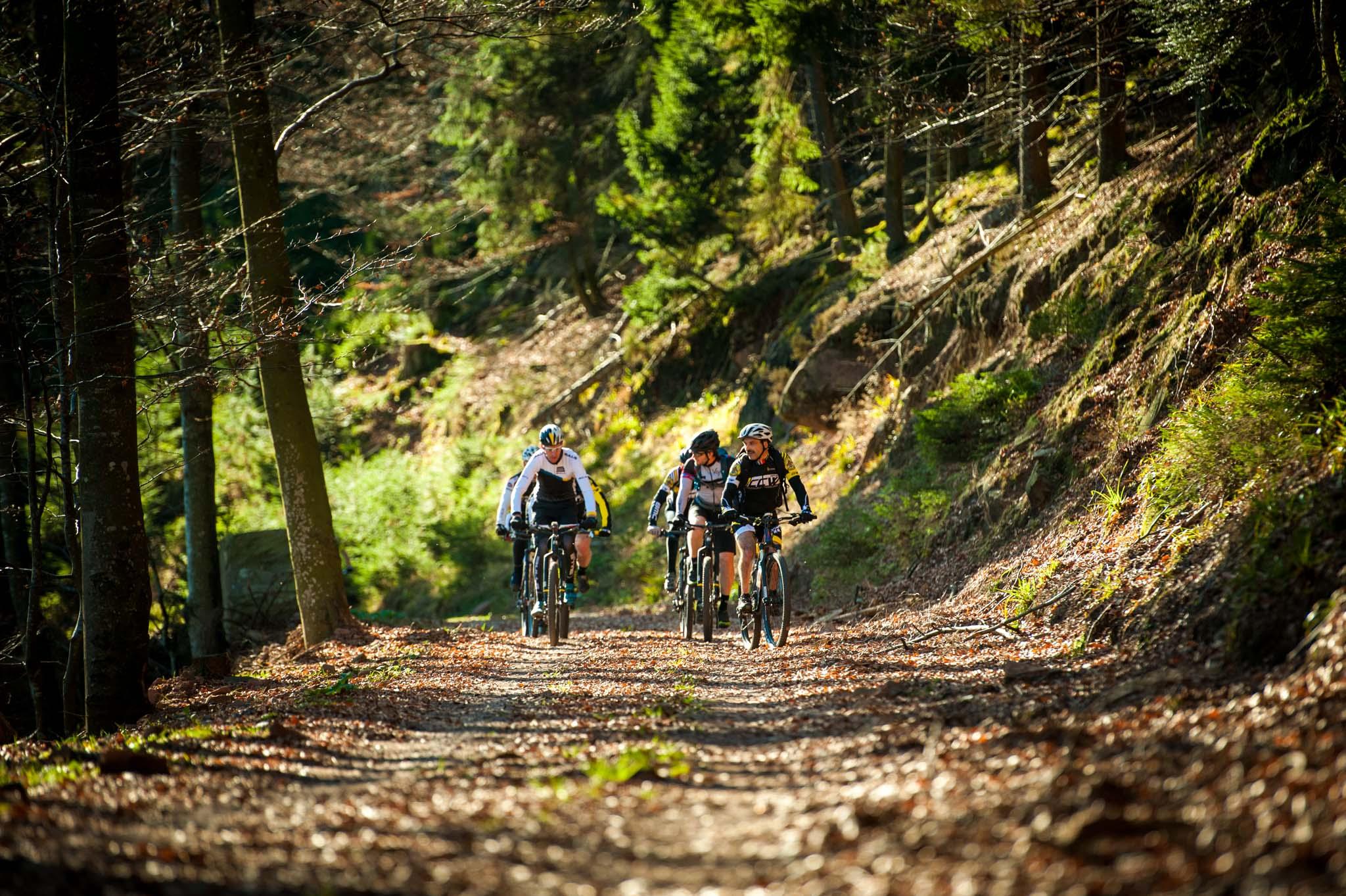 Sortie Cyclo Club de Wasselonne- Vélo de Route - Cols Vosgiens