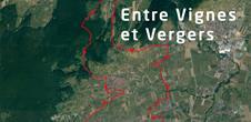Base VTT Circuit 11 Entre Vignes et Vergers