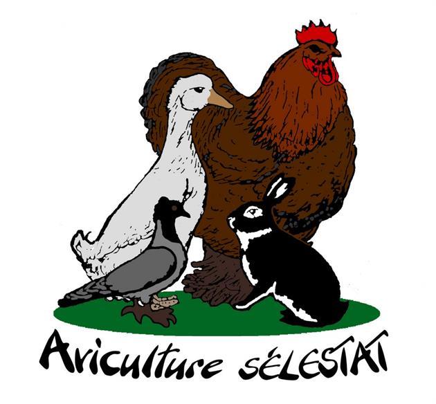 Société aviculture