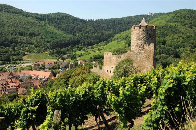 http://apps.tourisme-alsace.info/photos/kaysersberg/photos/chateau-kaysersberg-panorama.jpg