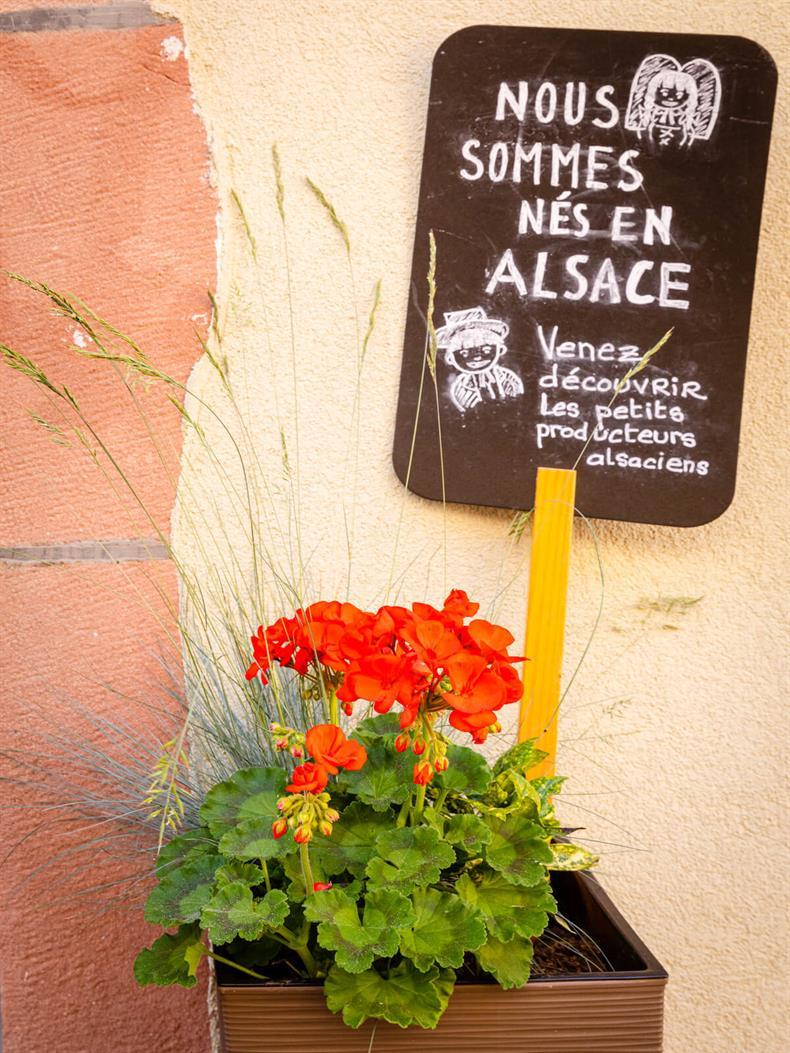 Nous sommes nés en Alsace